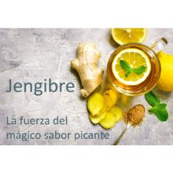 CHICLE DE JENGIBRE CON XILITOL Y STEVIA GINJER