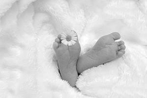 Cuida la piel de tu bebé, con las mejores colonias para bebés, sin alcohol ni otros productos químicos